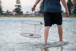 drop-net-crabbing-rockingham