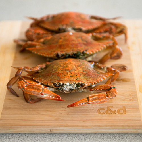 How To: Crabbing, Prepare The Catch