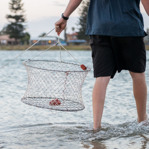 How To: Go Crabbing!