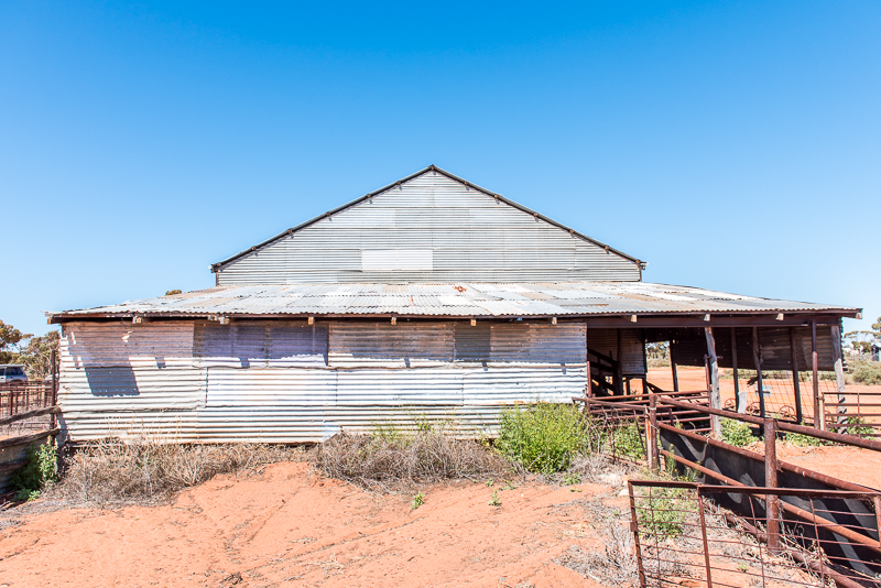 An old shearing shed at Credo, a station nearby Rowles Lagoon bought out by the government.