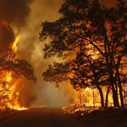 Total Fire Bans: what it means to camping and 4wding